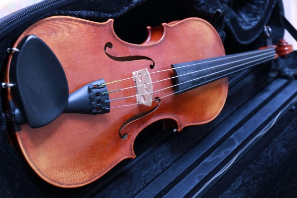 http://club-musical.com/club/photo/violon.jpg